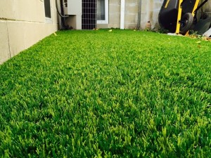 landscape, synthetic turf, artificial grass, lawn, yard