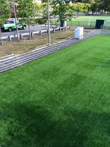 replacement turf