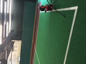 artificial grass and sports