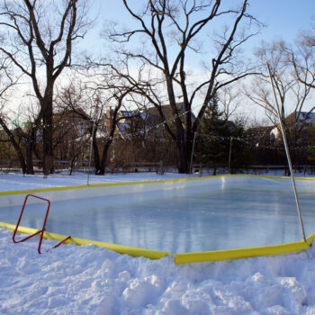 Backyard rink NiceRink